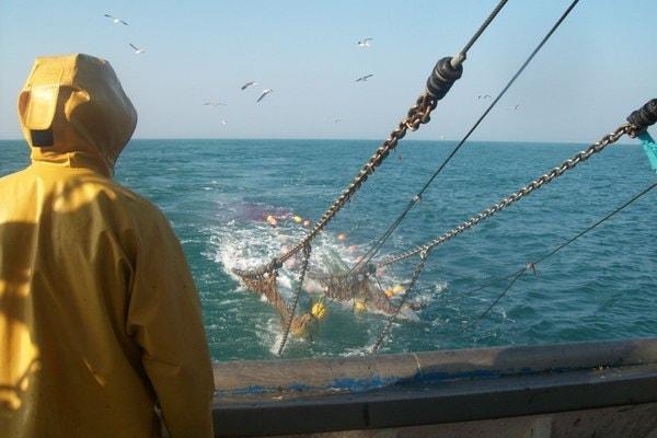 Pêche en mer en chalutier