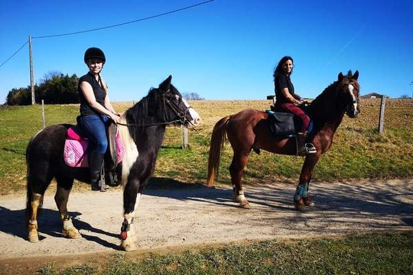 Balade à cheval dans les Collines du Béarn et sur le chemin de Compostelle