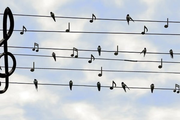 S'épanouir à travers le chant