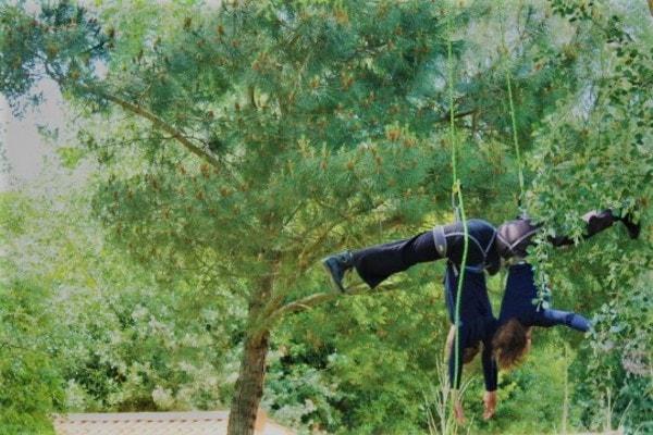 Dansez dans les arbres